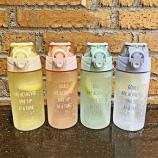 450ML磨砂亚奇怡乐运动水壶带吸管学生便携水杯子