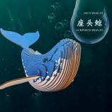 蓝色星球-座头鲸 diy手工制作拼装玩具桌面摆件