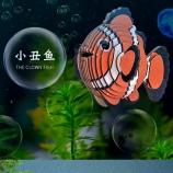 蓝色星球-小丑鱼 diy手工制作拼装玩具桌面摆件